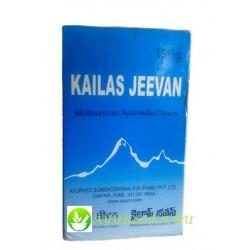 Kailas Jeevan 120gr Кайлаш Дживан Аюрведа Индия