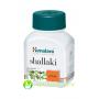 Shallaki Himalaya 60 tab
